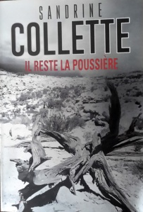 ob_2f8acd_poussiere-colette-denoel
